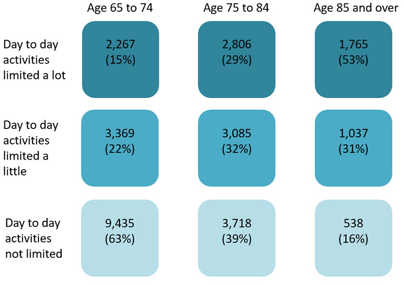 Ageing Well: Key indicator 2